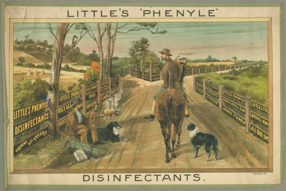 Little's Phenyle Disinfectants